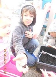 worm-farm-learning - worm-farm-learning