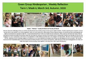 Green Reflection T1 Week 6 - Green Reflection T1 Week 6