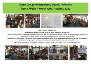 Green Reflection T1 Week 7 - Green Reflection T1 Week 7