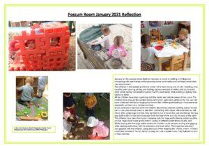 Possum Reflection January 2021 - Possum Reflection January 2021